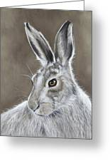 Mountain Hare Greeting Card
