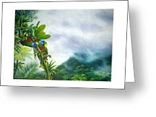 Mountain High - St. Lucia Parrots Greeting Card