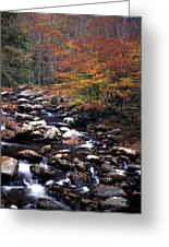 Mountain Leaves In Stream Greeting Card