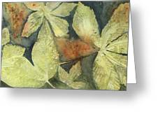 Mountain Leaves Greeting Card