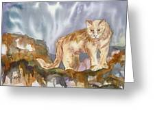 Mountain Lion On The Rocks  Greeting Card