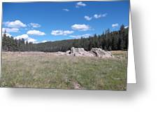 Mountain Meadow Above Cuba,nm Greeting Card