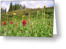 Mountain Meadow Abstract Greeting Card
