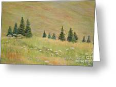 Mountain Meadow Greeting Card