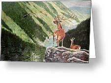 Mountain Morning Greeting Card