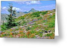 Mountain Of Color Greeting Card