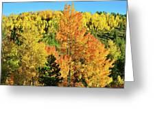 Mountain Of Color In Dillon Colorado Greeting Card