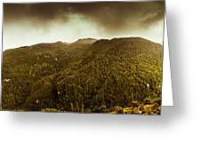 Mountain Of Trees Greeting Card