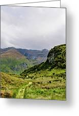 Mountain Path Vert Greeting Card