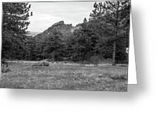 Mountain Peak Through The Trees In Black And White Greeting Card