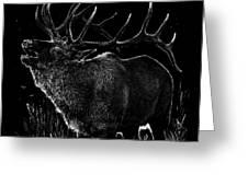 Mountain Reveille Greeting Card