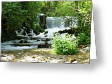 Mountain River Spring Greeting Card