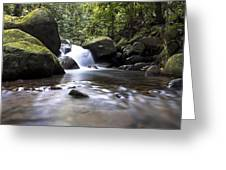 Mountain River Stream Greeting Card
