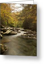 Mountain Stream 2 Greeting Card