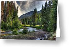 Mountain Stream 4 Greeting Card