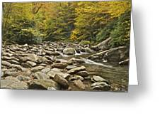 Mountain Stream  6058 Greeting Card