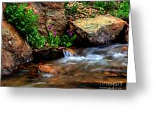 Mountain Stream Garden Greeting Card