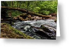 Mountain Stream Iv Greeting Card