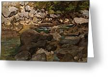 Mountain Stream With Boulders Greeting Card