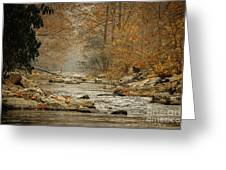 Mountain Stream With Tree Overhang #1 Greeting Card