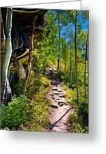 Mountain Trail Greeting Card