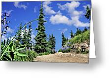 Mountain Trail - Olympic National Park Greeting Card