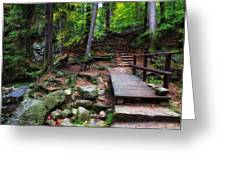 Mountain Trail With Staircase In Autumn Forest Greeting Card