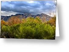 Mountain Valley No33 Greeting Card