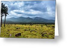 Mountain View After Rain Greeting Card