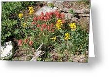 Mountain Wild Flowers Greeting Card