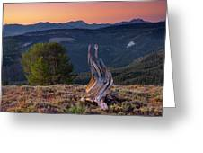 Mountain Wood Formation Greeting Card