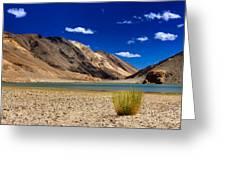 Mountains And Green Vegetation Chagor Tso - Lake Leh Ladakh Jammu Kashmir India Greeting Card