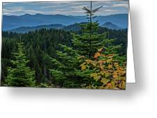 Mountains Around Priest Lake Greeting Card
