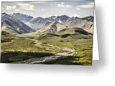 Mountains In Denali National Park Greeting Card