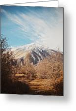 Mountains In The Background Xvi Greeting Card
