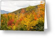 Mountains In The Fall Colors Greeting Card