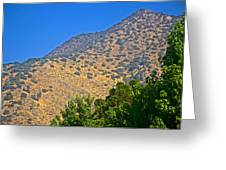 Mountainside From Wealthy Neighborhood Above Santiago-chile Greeting Card