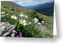 Mountainside Greeting Card