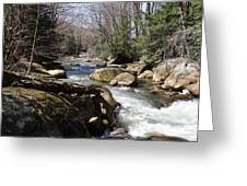 Mountainside Stream Greeting Card