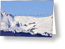 Mountaintop Geese Greeting Card