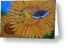 Mourning Cloak's Sunflowers Greeting Card