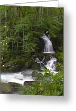 Mouse Creek Falls Greeting Card