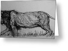 Moving Lion 1 Greeting Card