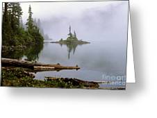 Mowich Lake In Fog  Greeting Card