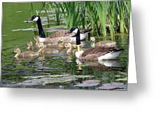 Mr And Mrs Goose And Family Greeting Card