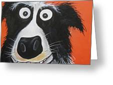 Mr Dog Greeting Card