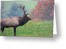 Mr Elk Enjoying The Autumn Greeting Card