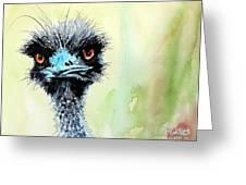 Mr. Grumpy Greeting Card