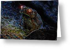 Mr Toads Wild Eyes Greeting Card