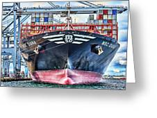 Msc Diana Greeting Card
